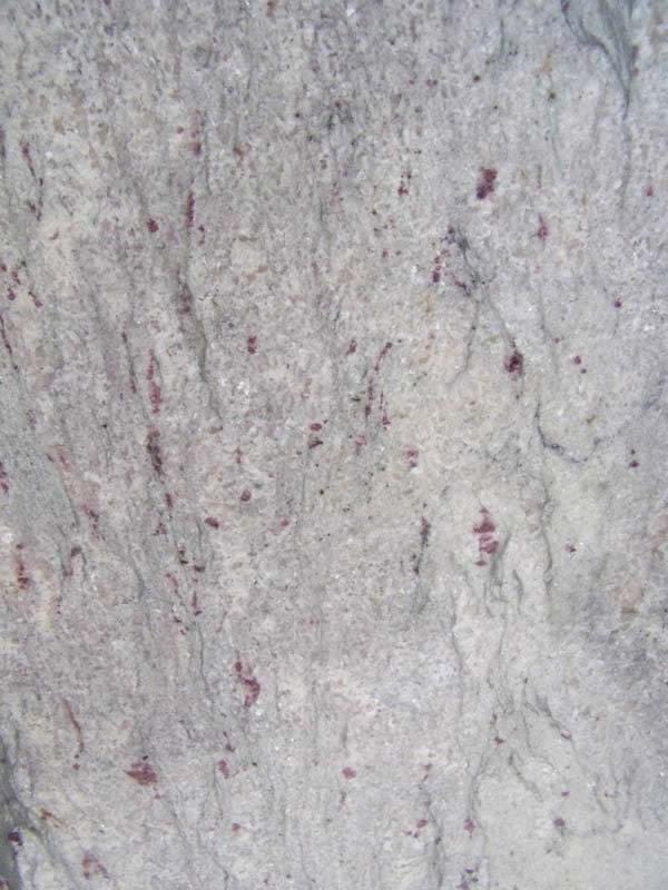 Ambrosia White Granite Tiles, Slabs and Countertops - Dark ...